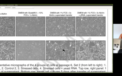 New Study Set to Disprove Virology (Video)